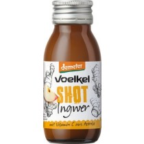 Mini Shot Ingwer 60ml