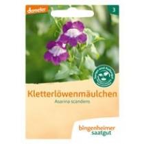 Kletterlöwenmäulchen - Blumen (Saatgut) 1St