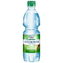 Güstrower Schlossquell medium 0,5l PET