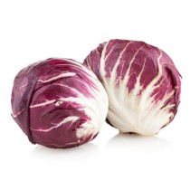 Radicchio - Salat