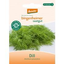 Dill - Kräuter (Saatgut) 1St